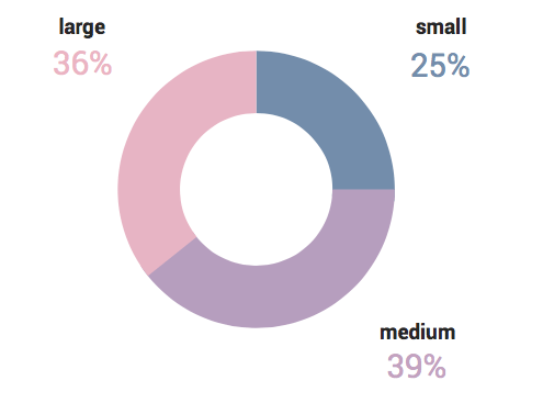 Split of our airline conversion optimization survey by size