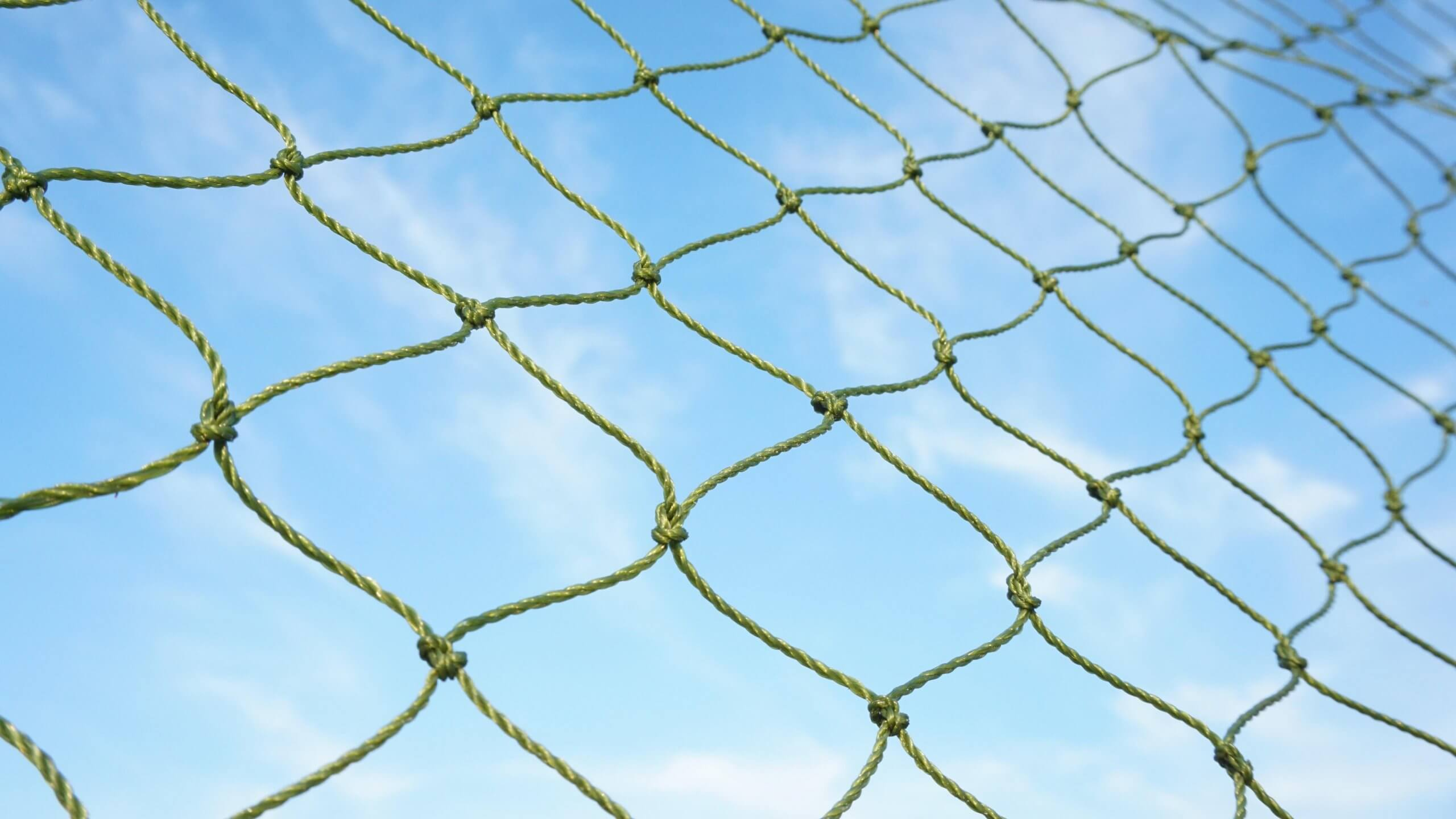 UX research should be your safety net